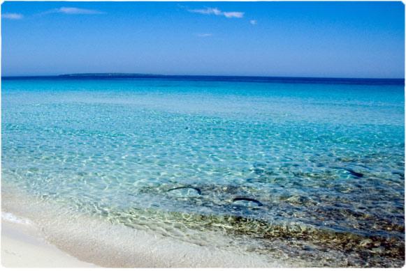 Llevant levante playas de formentera - Alojamiento en formentera con encanto ...